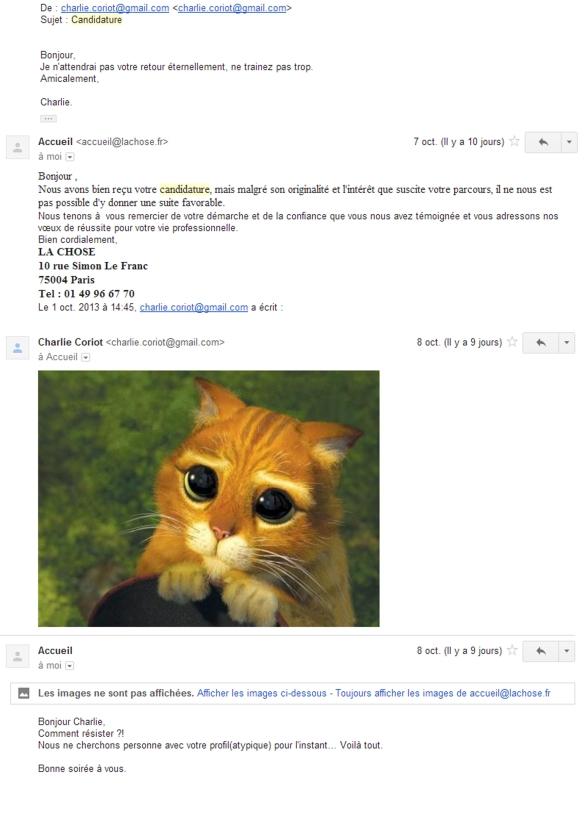 PRETENTION relance chat de shrek